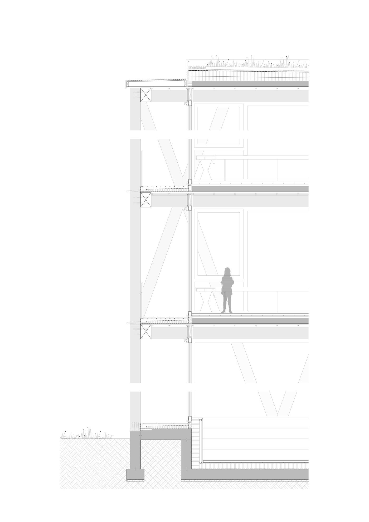 buan-architekten-ersatzneubau schulhaus zentrum-diessenhofen-fassadenschnitt