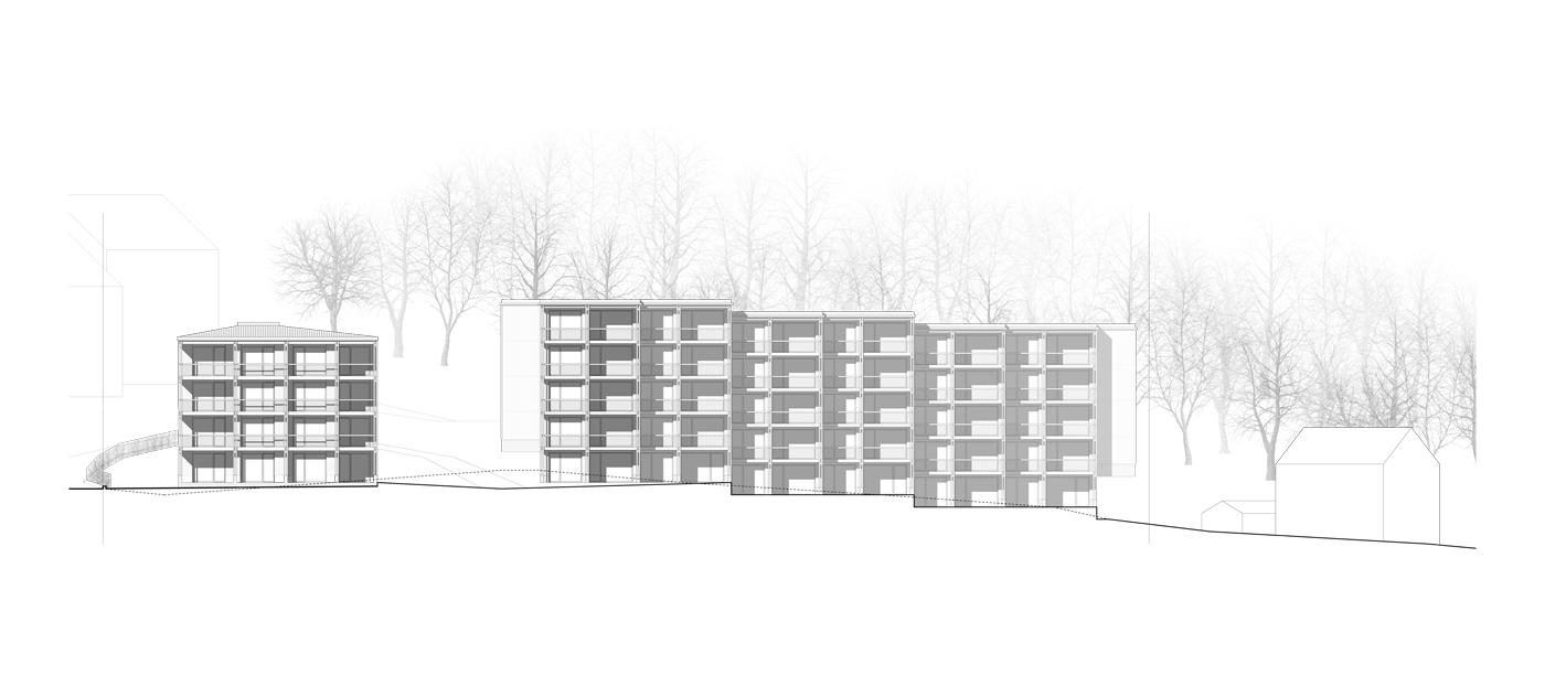 buan-architekten-oberdorf-vitznau-ansicht-west