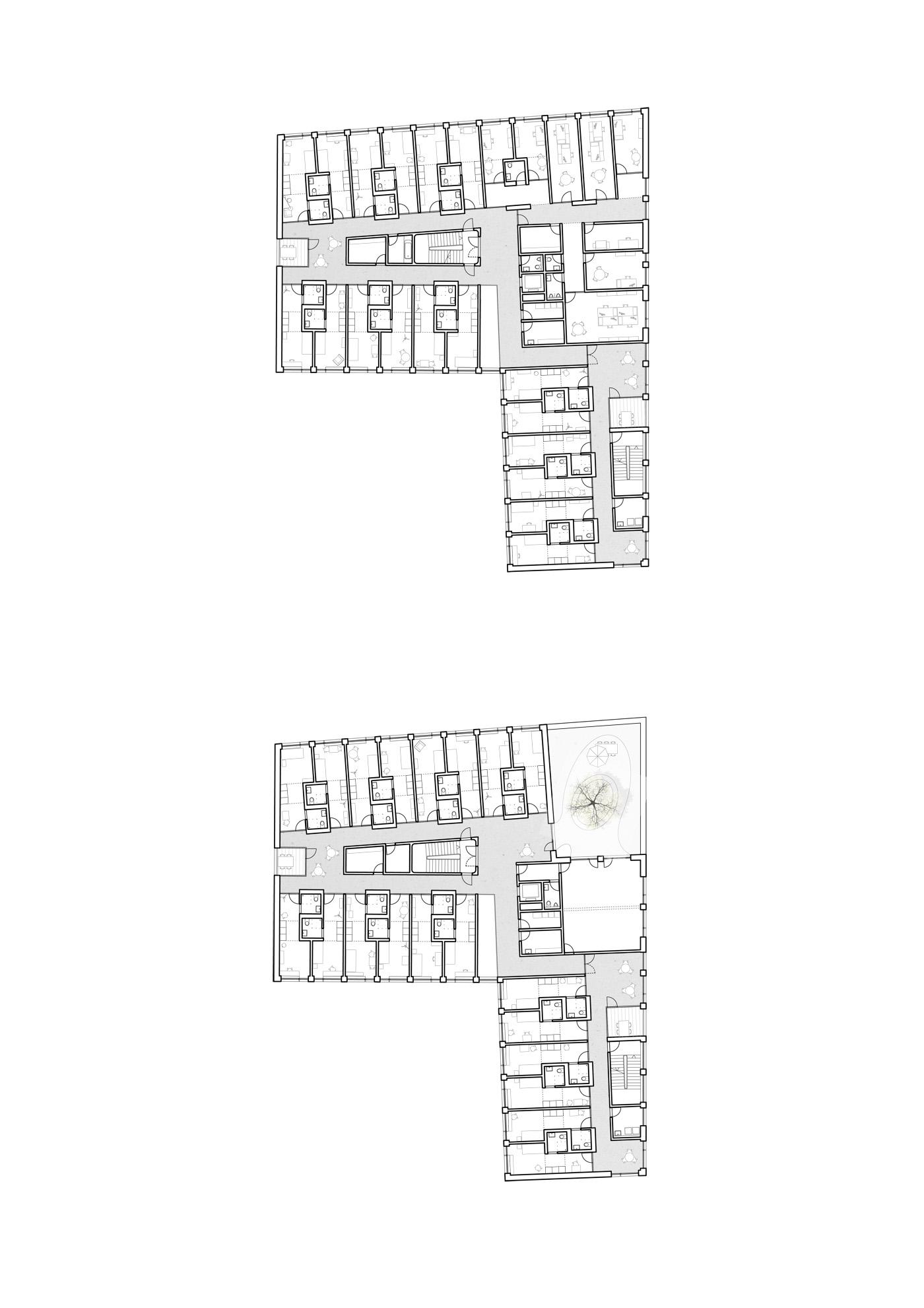 buan architekten – Studienauftrag Wohnheim Lindenfeld Emmen – Grundrisse Obergeschosse