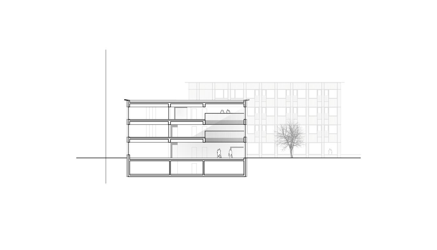 buan architekten – Studienauftrag Wohnheim Lindenfeld Emmen – Schnitt 1