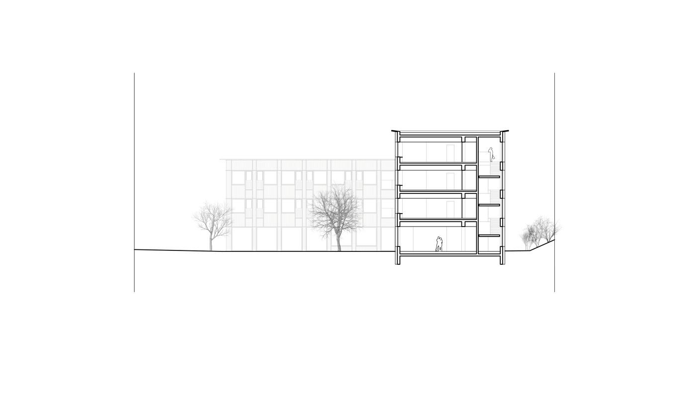 buan architekten – Studienauftrag Wohnheim Lindenfeld Emmen – Schnitt 2