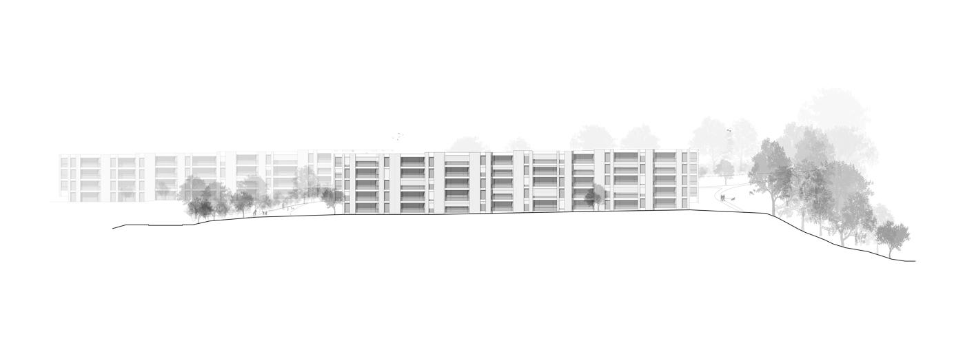 buan-architekten-wygart-sempach-ansicht-sued