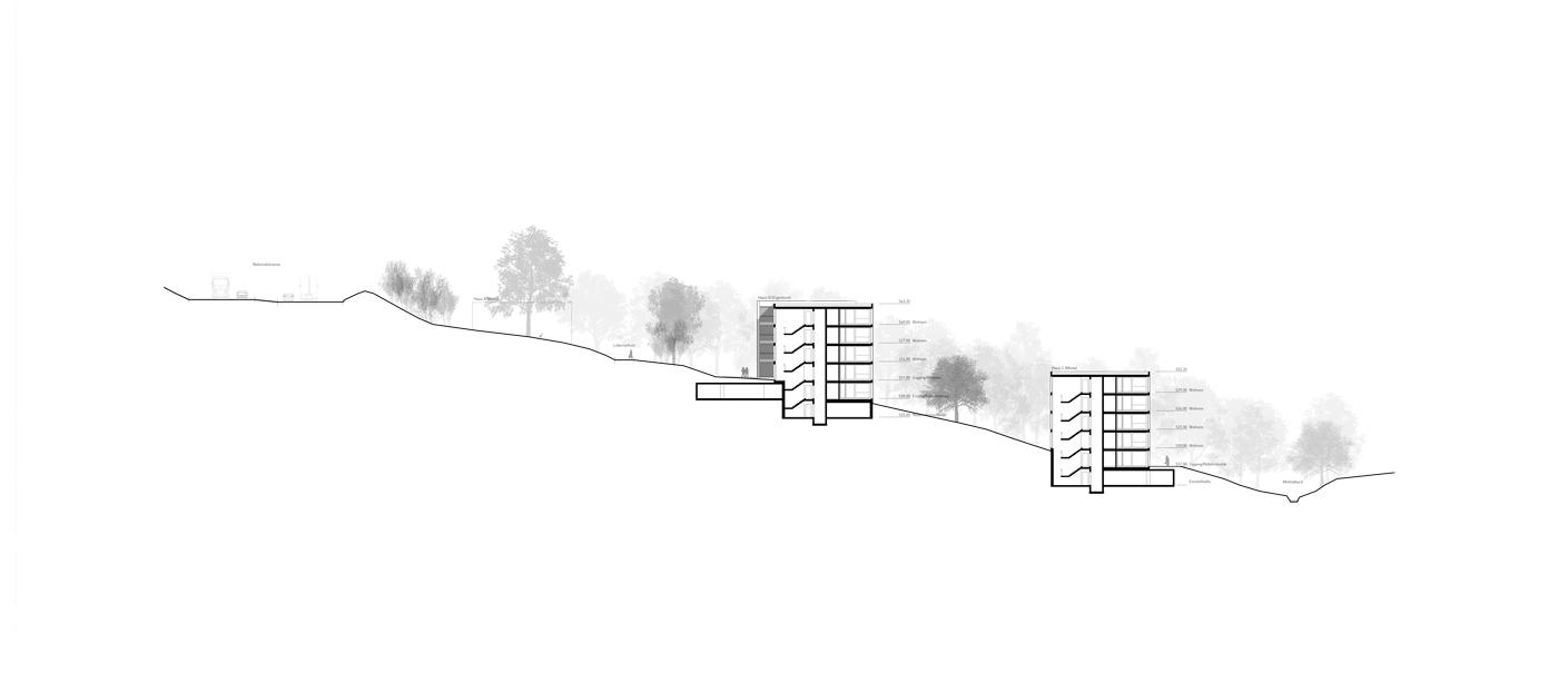 buan-architekten-wygart-sempach-schnitt-1
