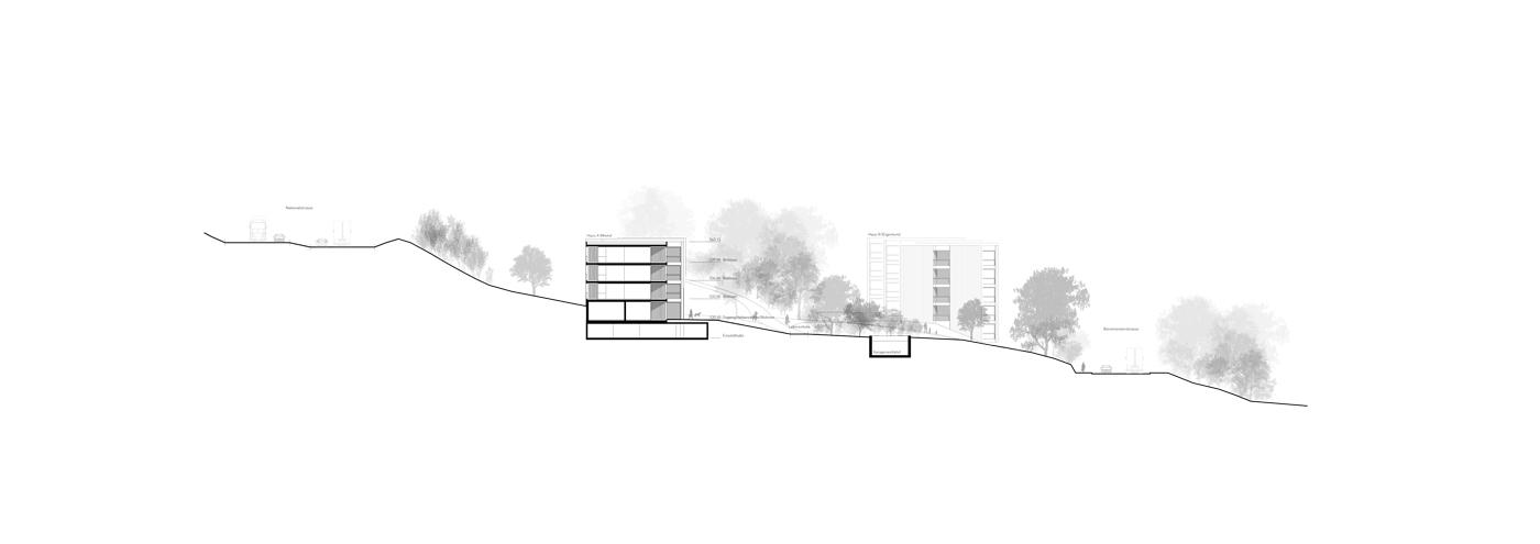 buan-architekten-wygart-sempach-schnitt-2